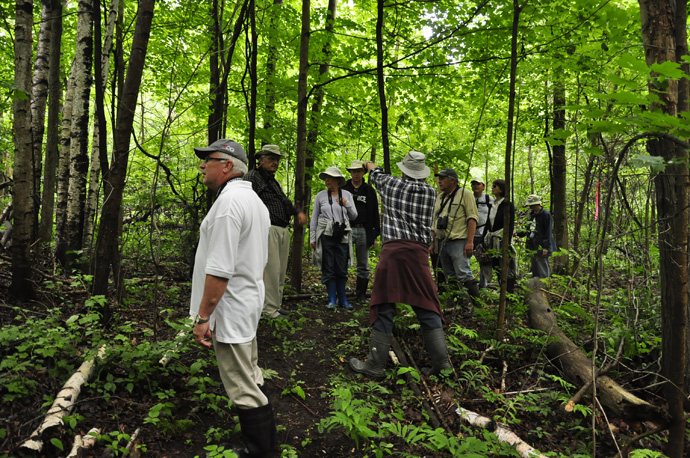 Gary Bugg points out the new trail loop into the southern woods (Braham Tract, Jun 11, 2016). (credit: Dalila Seckar)